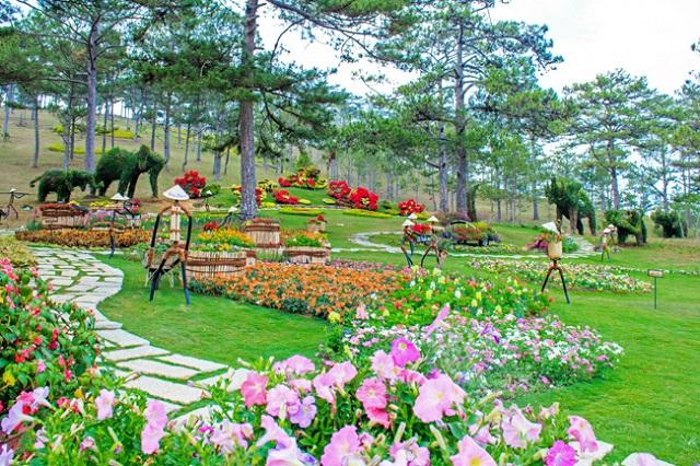 Đồi Mộng Mơ rực rỡ sắc hoa tại Đà Lạt