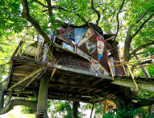 Bật mí 3 quán cà phê trên cây được yêu thích nhất ở Nhật Bản