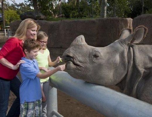 Điểm danh những sở thú lớn nhất nước Mỹ